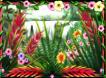rainforest dream bonus