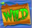 dam rich wild