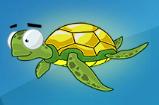 fortune fish turtle