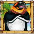 penguins in paradise wild