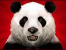 wild panda wild
