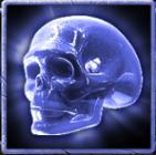 3 elements skull