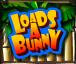 loads a bunny wild