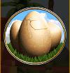 boulder bucks egg