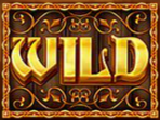 riches of camelot wild