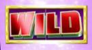 ultra 5 reels wild
