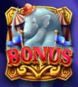 circus wonders elephant