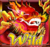 dragon palace wild