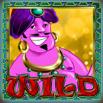 genies treasure wild