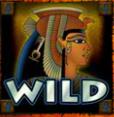 secrets of the tomb wild