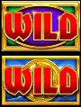 reels-of-gold-wild