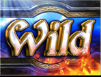 amulet-and-the-charm-wild