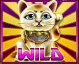astro-cat-wild