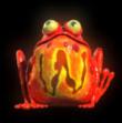 frog-grog-wild