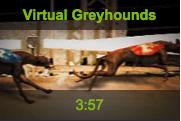 winner-virtual-greyhounds