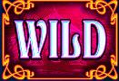kooza-wild