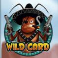 las-cucas-locas-wild