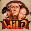 three-stooges-wild
