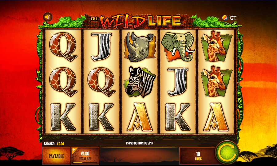 the wild life screenshot