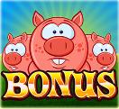 Smash The Pig Slots Review