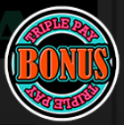 Reels Of Fortune Triple Pay Slots Review