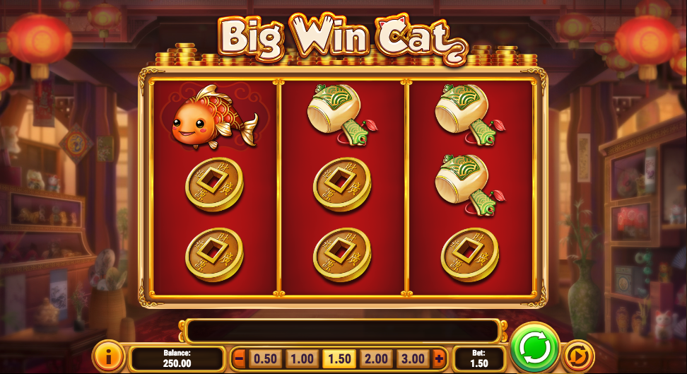 big win cat screenshot
