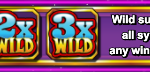 Wild Moon Slots Review