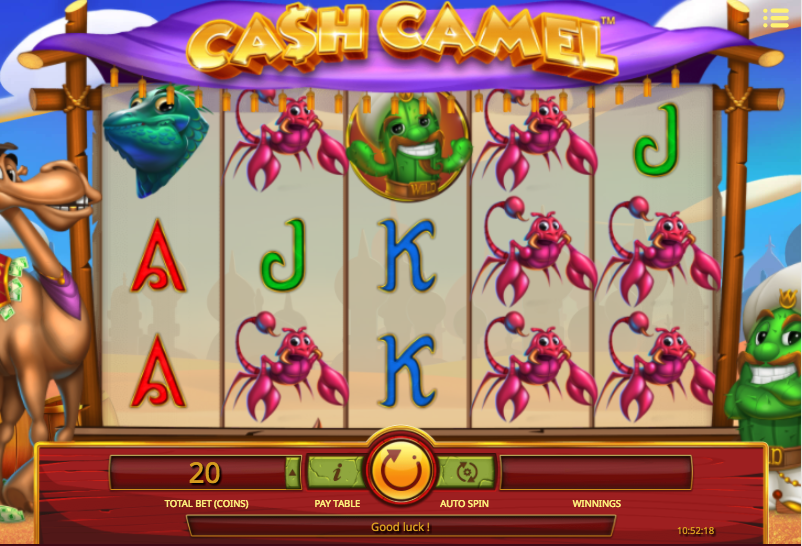 cash camel screenshot