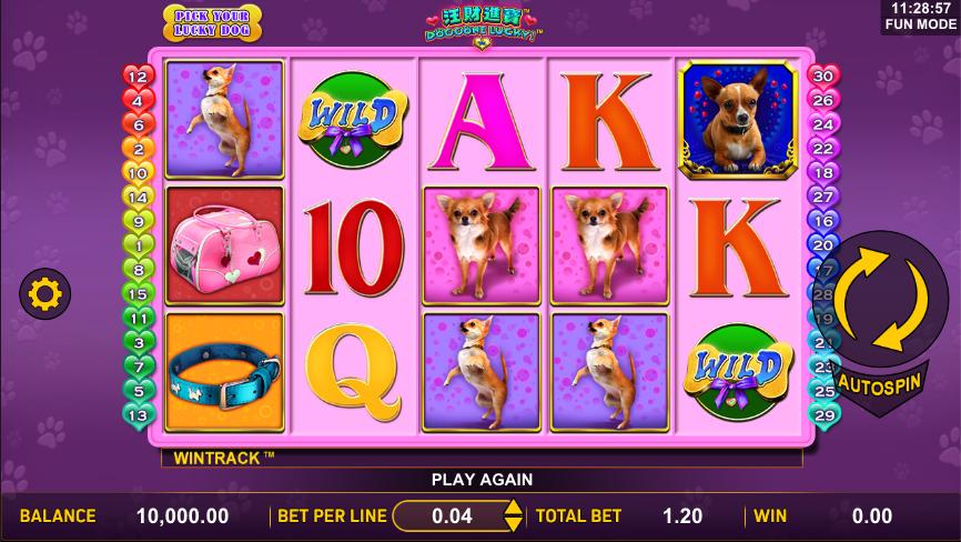 doggone lucky screenshot