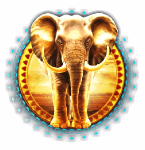 Elephant King Slots Review
