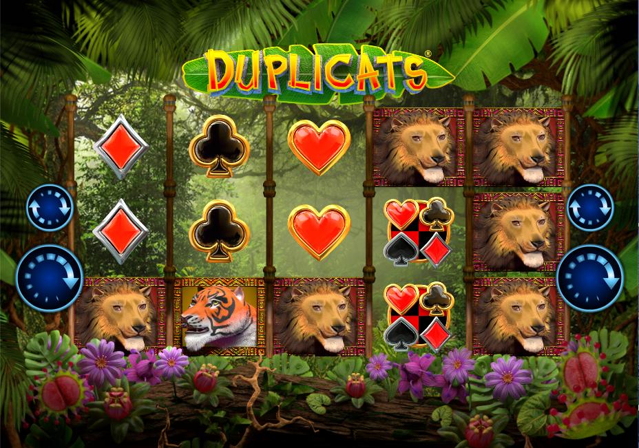 duplicats screenshot