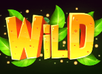 Fruits Go Wild Slots Review