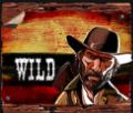 Desperados Wild Megaways Slots Review